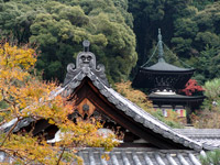 永観堂 秋の寺宝展