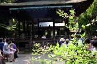 梨木(なしのき)神社 萩まつり