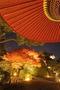知恩院ライトアップ2014(夜間特別拝観)