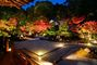 金戒光明寺(こんかいこうみょうじ) 御影堂・大方丈・庭園 夜間拝観 ライトアップ
