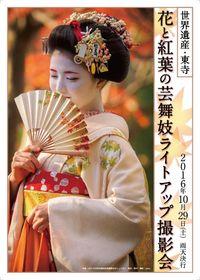 世界遺産東寺・花と紅葉の芸舞妓ライトアップ撮影会