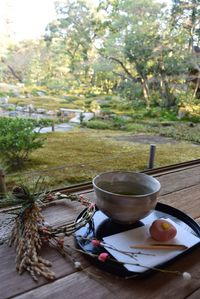 無鄰菴 季節のしつらえと限定茶菓子席