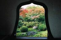東福寺 天得院 紅葉を愛でる特別拝観とお食事プラン