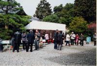 梅宮大社 梅・産(うめうめ)祭