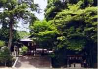 平岡八幡宮 「花の天井」秋の特別拝観