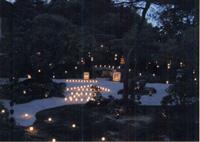 梵燈のあかりに親しむ会 東林院・夜間特別拝観