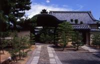大徳寺 総見院 春の特別公開