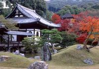 高台寺・圓徳院 秋の特別拝観とライトアップ