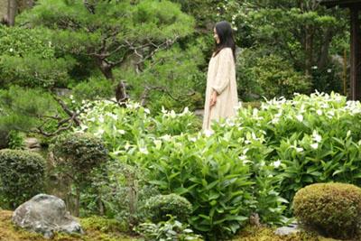 両足院 夏の特別拝観 庭園特別公開