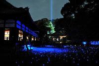 青蓮院門跡 夜間の特別拝観