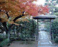 秋の非公開寺院特別公開 大徳寺総見院