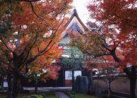 秋の非公開寺院特別公開 大徳寺黄梅院