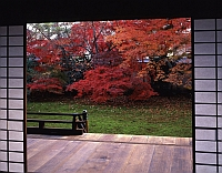 秋の特別公開 宝鏡寺(ほうきょうじ) 秋の人形展