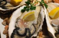 【貝と白ワインのバル・KAKIMARU西院店】貝料理の雄が西院の地にオープン!