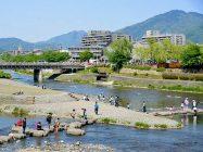 まいまい京都 【鴨川】水文化研究家とめぐる京の水、鴨川沿いを南へ