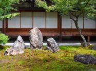 まいまい京都 【建仁寺】庭師とまちなか植物ウォッチング!籬の森から建仁寺へ