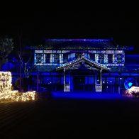 【梅小路公園ライトアップイベント】写真撮りごたえ抜群!関連イベント多数開催中!