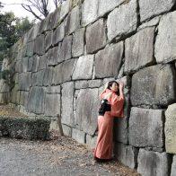 【元離宮二条城】時代劇に欠かせぬ世界遺産で、陶然恍惚!