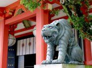 まいまい京都 【鞍馬寺】雲珠桜が染める神秘の古刹、天狗跳び虎が護る宇宙エネルギーの聖地