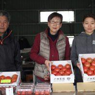 京都・久御山で土づくりからこだわった、戸田農園の高糖度トマト