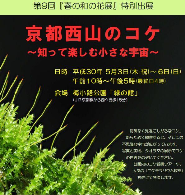 【春の和の花展特別出展】 京都西山のコケ~知って楽しむ小さな宇宙~