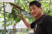 自販機で野菜!? 西岡農園の野菜自販機で、新鮮で安い山科産の野菜を