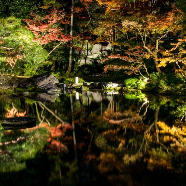 無鄰菴 秋の紅葉特別夜間公開 トワイライト庭園パーティー2018