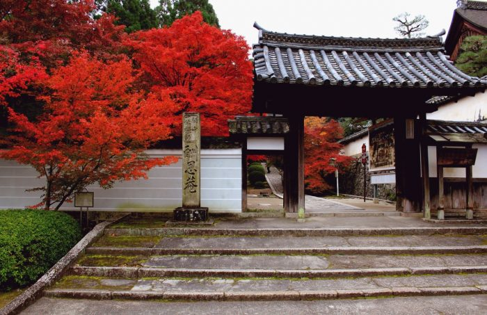 酬恩庵 一休寺と紅葉を楽しむ為の、期間限定カフェ「CANVAS TO KYOTO IN IKKYUJI」
