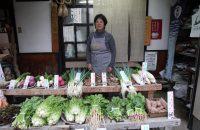京都市の中心部で作られる京の伝統野菜 「京やさい 佐伯」