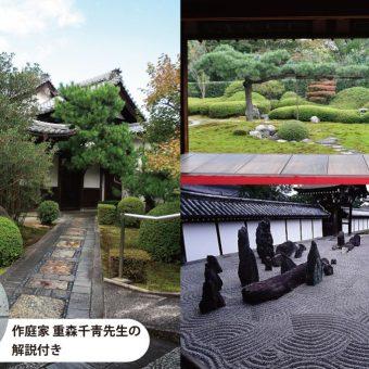 【京あそび】作庭家 重森千靑先生に東福寺本坊庭園・塔頭一華院の庭園を学ぶ