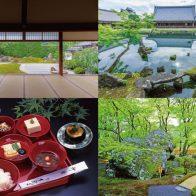 【京あそび】京都嵐山 新緑の古刹名庭を庭師とめぐる