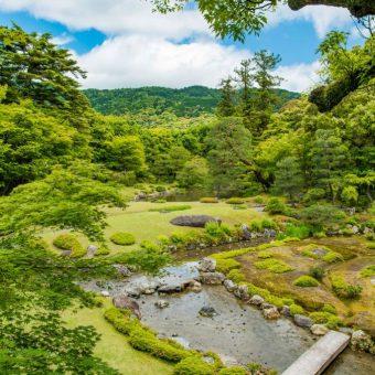庭割引 毎月28日は「庭(ニワ)の日」 35歳以下は無料!