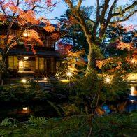 瓢亭×無鄰菴 秋の南禅寺界隈をしっとりと味わう 特別プライベート和ろうそく茶会
