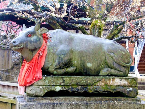 まいまい京都【北野天満宮】天空を司る天神の社、北野天満宮から平野神社へ