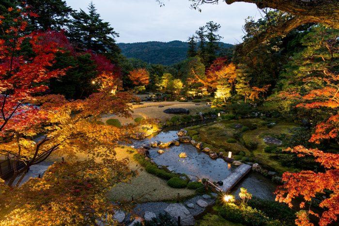 無鄰菴 秋の紅葉特別夜間公開 トワイライト庭園パーティー2019