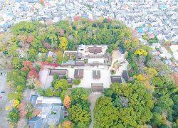 紅葉の美しい「糺の森」と「下鴨神社」を、またまたドローンで空からみてみた!
