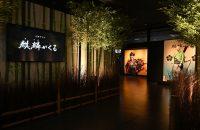 京都府民大注目!NHK大河ドラマのあれこれがわかる「麒麟(きりん)がくる 京都大河ドラマ館」1/11オープン