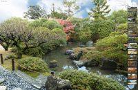 【城南宮】四季を通じて美しい境内をVRで楽しむ!