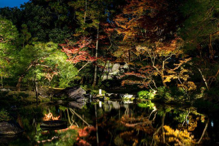 無鄰菴 秋の紅葉特別夜間公開 トワイライト庭園パーティー2020