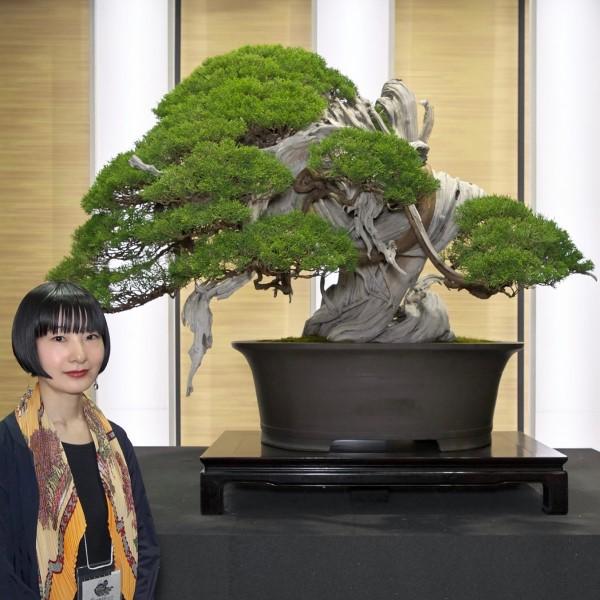 無鄰菴 連続講座「日本盆栽、小さな巨木ー盆栽からBONSAIへ!その愉しみを知る通史」全3回 『第2回 室町〜江戸ー園芸ブームと大衆化ー』