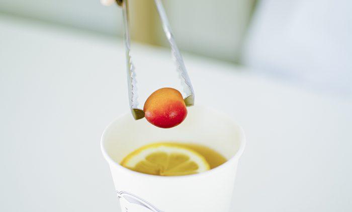 梅体験専門店「蝶矢」 新年縁起物。無病息災を祈願したお正月ドリンク 「梅に煎茶。」を期間限定販売