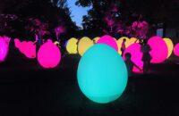 「チームラボ 東寺 光の祭~TOKIO~インカラミ」世界遺産・東寺が幻想的な光と音のアート空間に