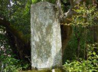 地域史跡見学会「洛北岩倉地域の歴史を歩く」